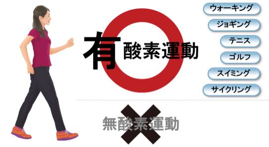 図:運動は無理をせず「続ける」ことが大切です。無酸素運動は一時的に血圧を上昇させるので要注意!